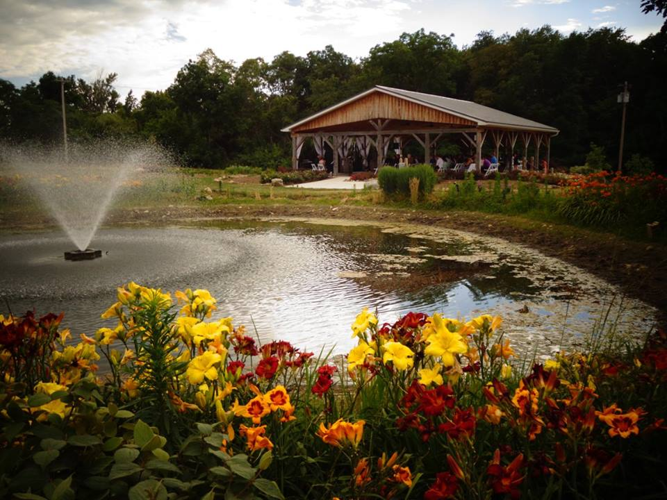 wedding near pond at Quincy Cellars